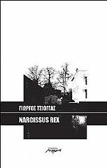 narcissus rex photo