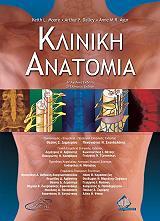 kliniki anatomia photo