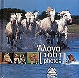 aloga 1001 photos photo