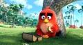 angry birds i tainia angry birds movie dvd extra photo 1