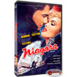 niagaras dvd niagara dvd photo