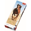 trefl puzzle 300pz hoofbeats photo
