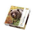 trefl puzzle 1000pz nature grizzly bear photo
