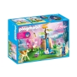 playmobil 9135 magemeni neradopigi photo