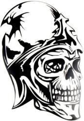 windowsticker skull 009 black photo