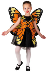 orange butterfly clown republic 1008 4 eton photo