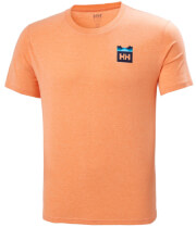 mployza helly hansen nord graphic hh t shirt peponi melanze l photo