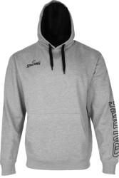 foyter spalding team ii hoody gkri melanze s photo