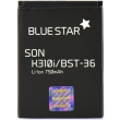blue star premium battery for sony ericsson k310i k510i j300 w200 750mah li ion photo