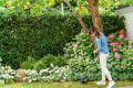 xlookoptiko mesinezas ilektriko bosch easy grass cut 23 280w 06008c1h00 extra photo 1